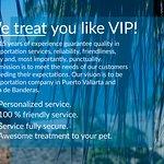 We treat  you like a VIP!