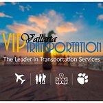 VIP VALLARTA TRANSPORTATION