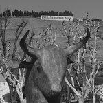 Tour près du Mangevins, le curieux taurobaule et la belle vue sur la celeb r colline de l'Hermit