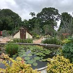 Botanical Garden (Jardim Botanico) Foto