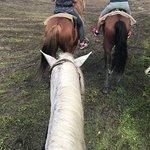 Bild från Rancho Lorilar