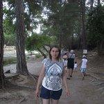 Photo of Saban Tree Houses
