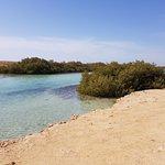 Ras Mohamed National Park Foto