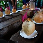Welcome Night Coconuts
