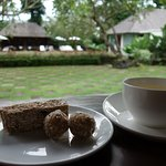 Tea Time in the Common Area with Fresh Ginger Tea, Bliss Balls, and Raw Coconut Bar