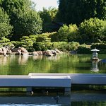 All the beauty and simplicity of a classic Japanese Garden.