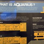 information about Aquarius