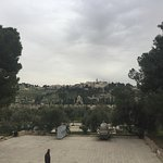 The mount of olives as viewed from the Temple Mount