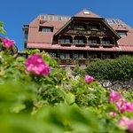 G'sund & Natur Hotel DIE WASNERIN im Frühling - Traditionshaus.