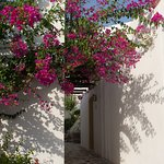 תמונה של Creta Maris Beach Resort
