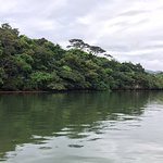 Photo of Nakama-river Protected Region