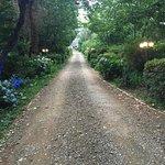 Lythwood Lodge Grounds