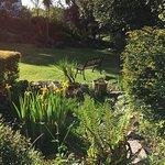 Lower lawned garden