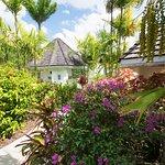 Gauguin Suite Garden Area