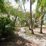 Path to beach / pool