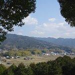 大和三山を望む