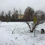 Volksgarten under snow