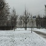 Volksgarten in early March
