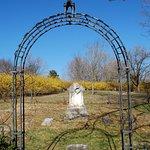 Billede af Old City Cemetery