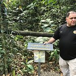 Rainforest Chocolate Tour Foto