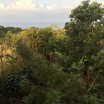 From our lanai