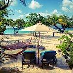 Photo of Spice Island Beach Resort