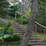 Stairs in the Japanese garden