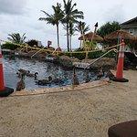 Photo of The Westin Princeville Ocean Resort Villas