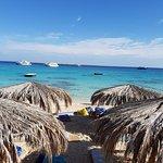 Photo of Mahmya Island