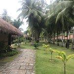 Photo of South Palms Resort