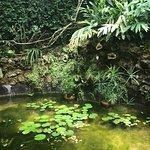 Photo de Royal Botanic Garden
