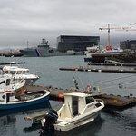 Photo de Saegreifinn - The Sea Baron