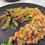 Nopolita cactus and white beans. Superb.