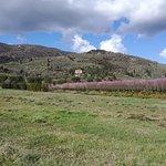Foto de Borgo Dolci Colline