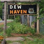 DEW Haven | Maine Zoo & Rescue
