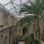 Glyptotek greenhouse