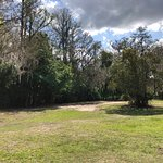 Wildlife and scenery at Fort Wilderness