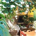 Photo de Casa Mario y Damaris