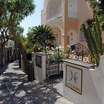 Sina Flora Capri
