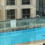 pool is a bird bath !