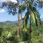 Foto de Villa Vanilla / Rainforest Spices