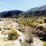 Mission Creek Preserve