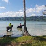 Lagoon paddle