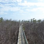 Photo of Long Key State Recreation Area