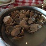 Tiny clams