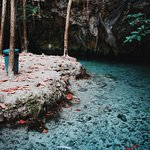 Photo of Cenotes Dos Ojos