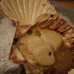 The scallops were tasteless, slightly warm, rubbery and with consistency of frozen food.