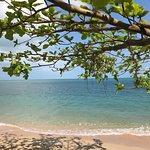 Foto de Health Oasis Resort
