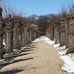 Herrenhäuser Gärten Foto