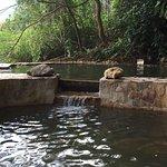 fresh watere pool